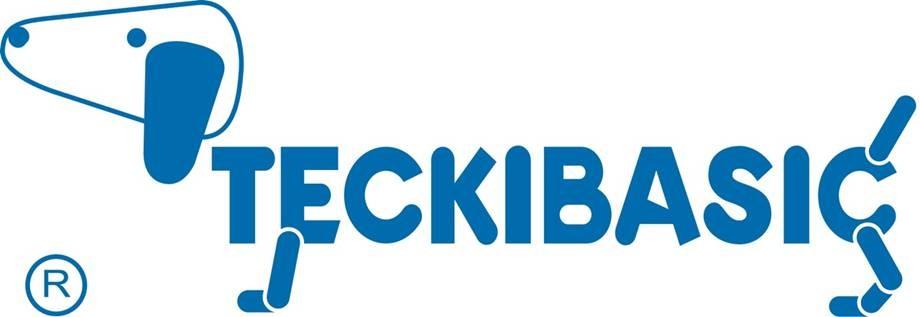 Logo Teckibasic Cachemire